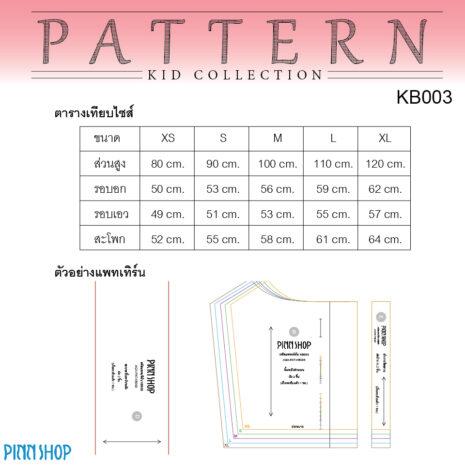 AQX-PAT-KB003_05