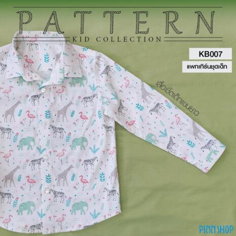 picforweb-KB007-04